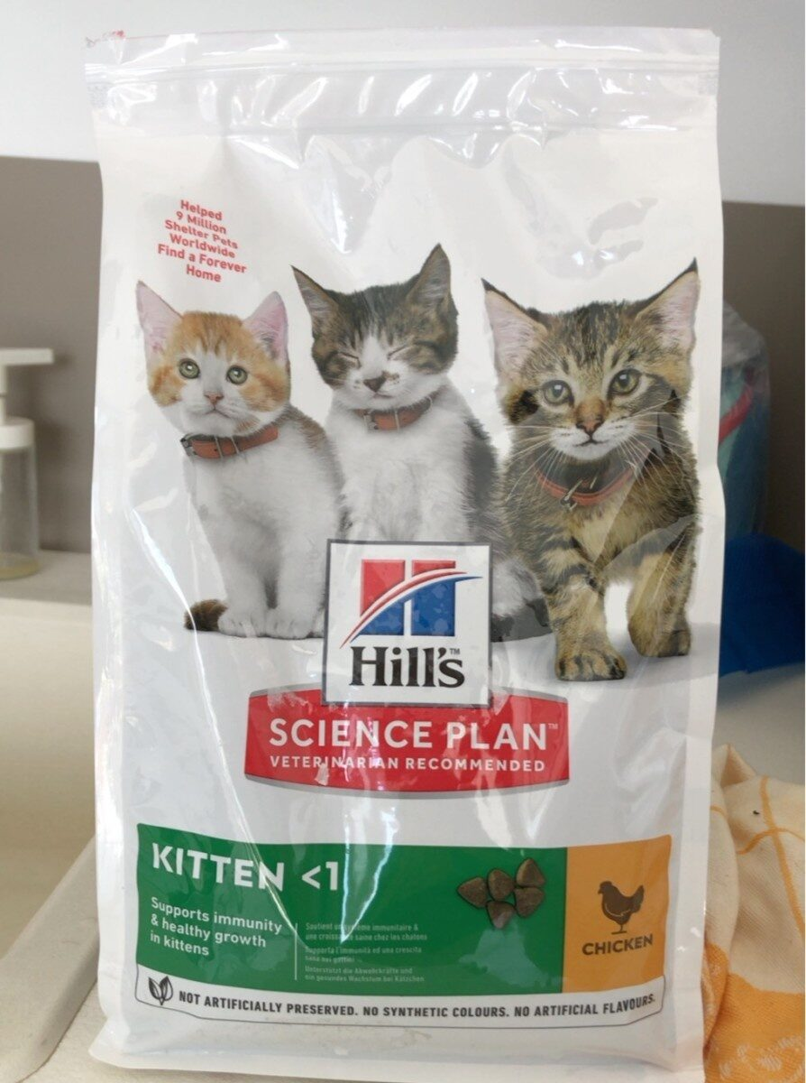 Kitten <1 - Product - fr