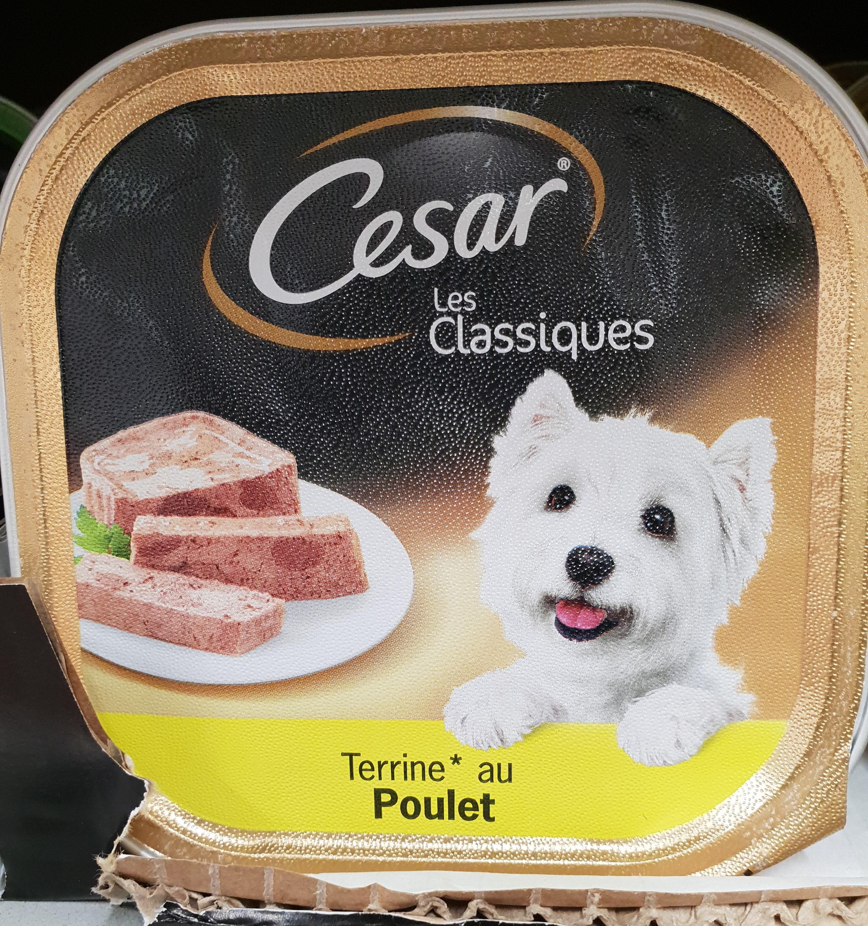 Aliment complet pour chiens aux fines bouchées de poulet - Product