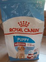 Puppy Medium - Product