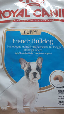 french bulldog - Product