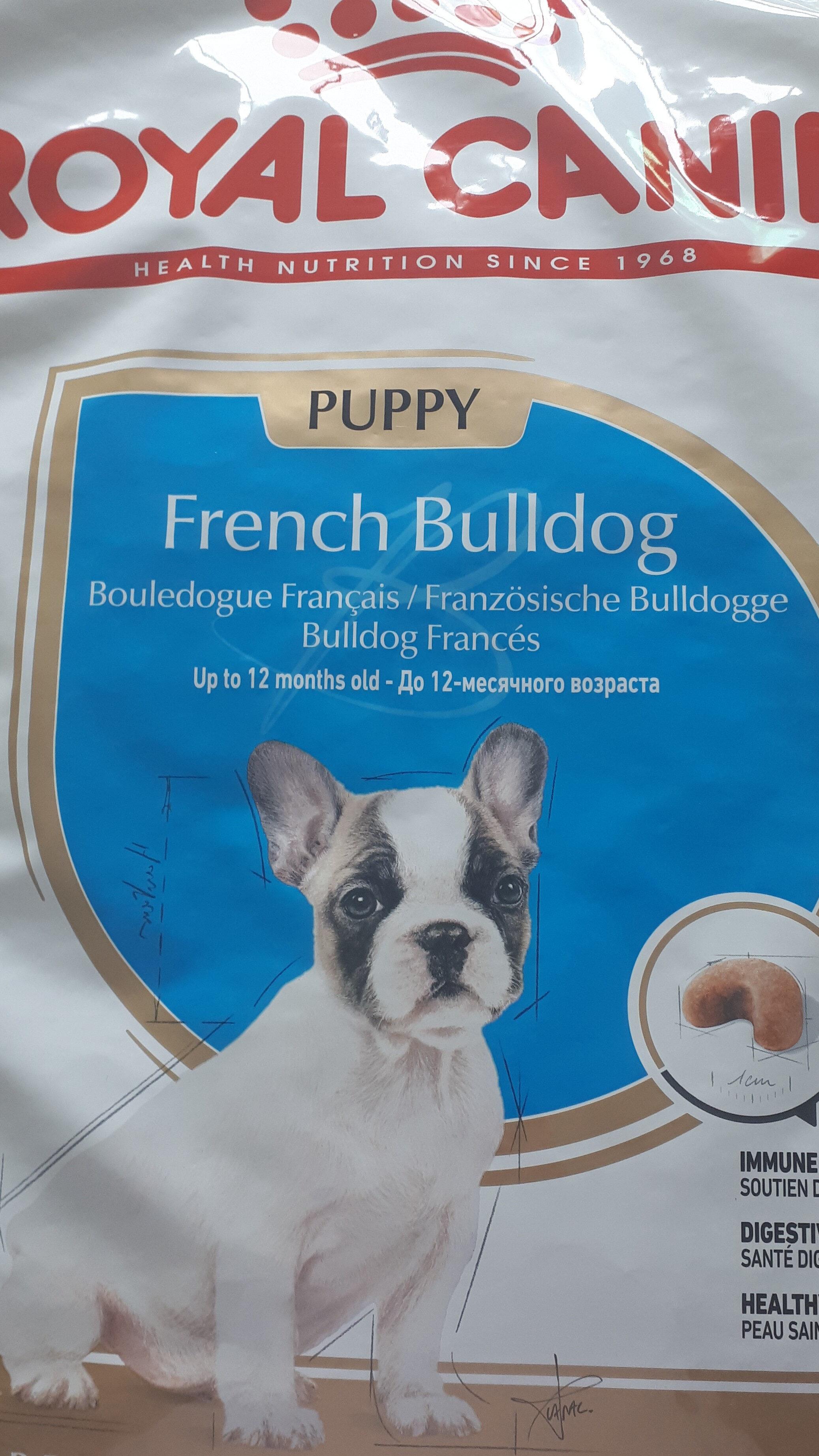 french bulldog - Product - fr