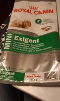 Mini exigent small dog - Produit