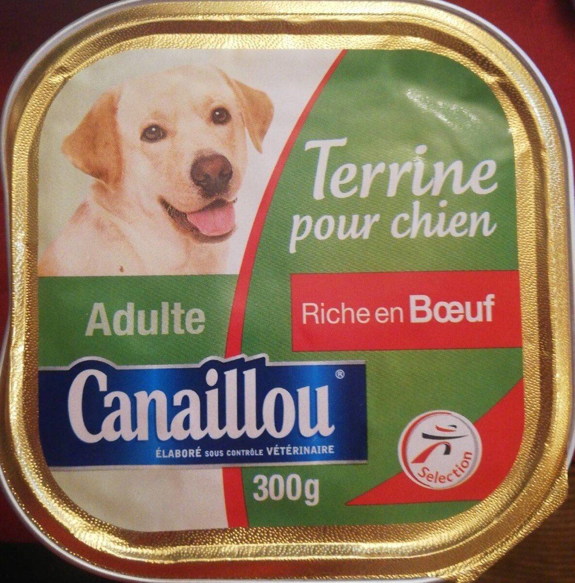Terrine pour chien riche en boeuf - Product - fr