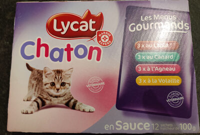Lycat chaton - Product