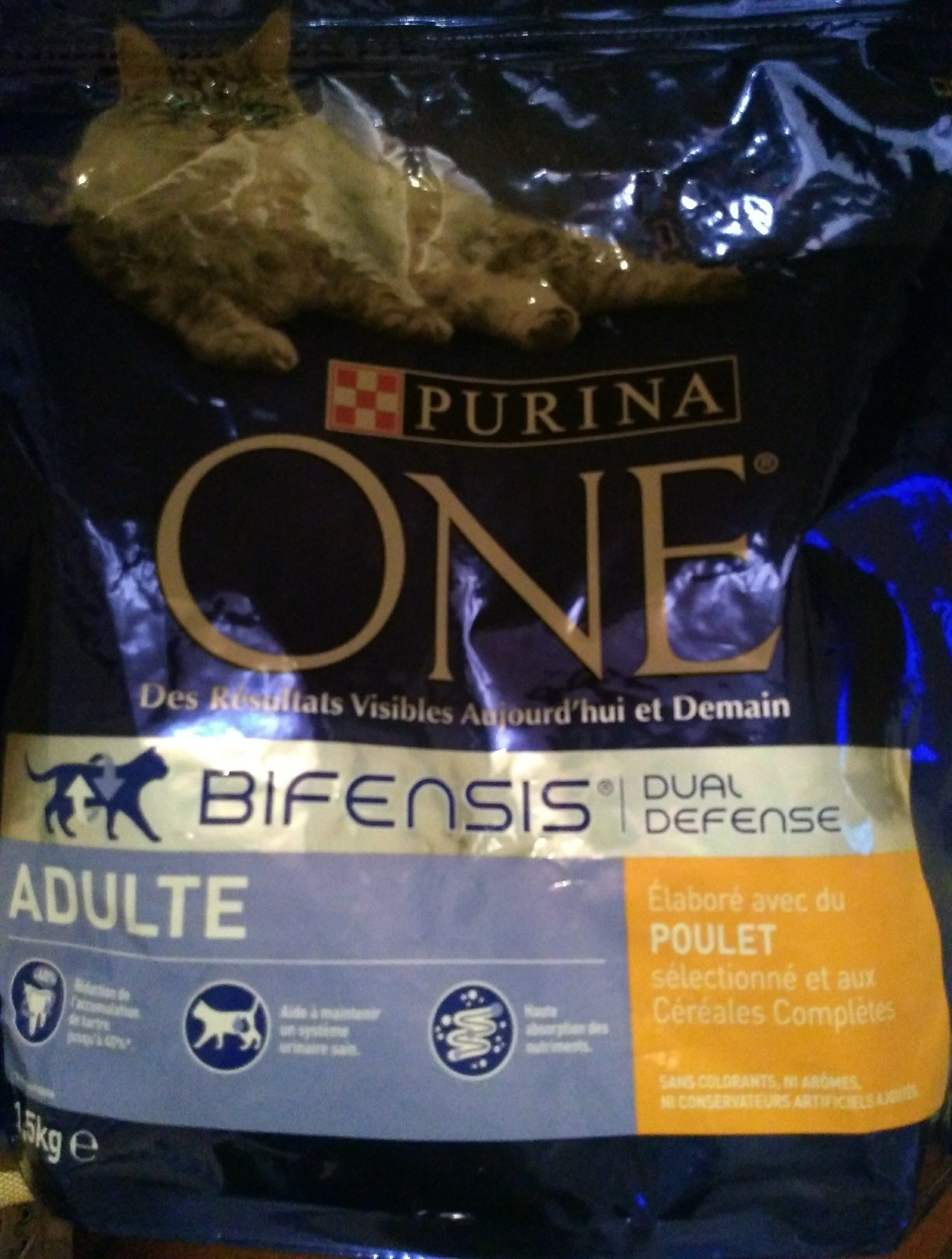 Purina One Adulte Poulet - Product