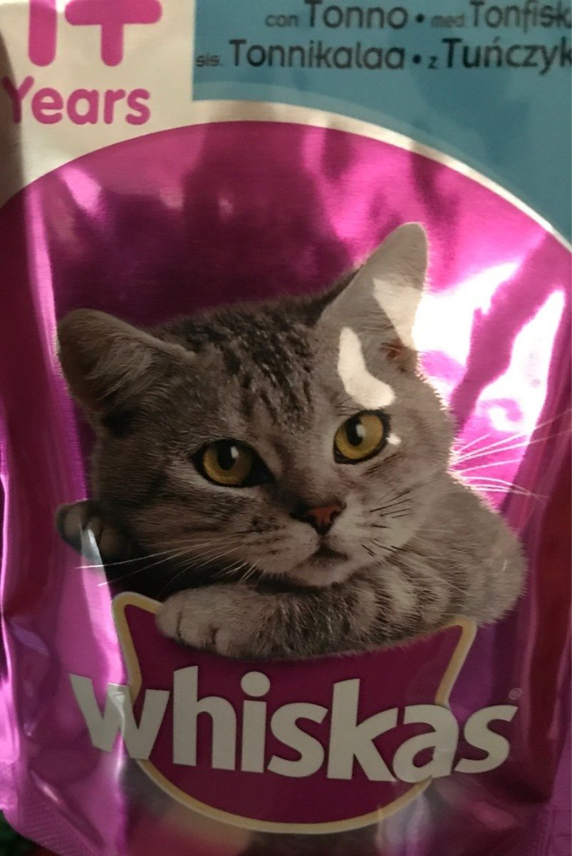 Pater pour chat - Product