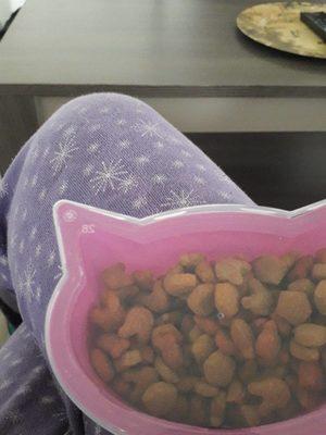 Crunchy treats - Product