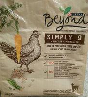 Beyond - Produit