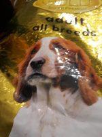 Croquettes chien - Product - fr